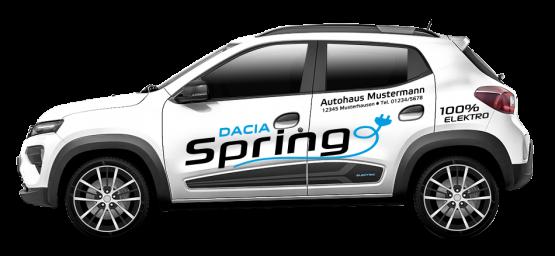 Dacia Spring 01